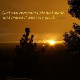 God Saw Everything
