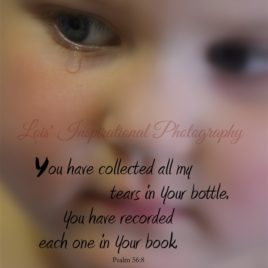 You have Collected
